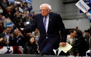 Bernie Sanders Declared Winner of New Hampshire Primary