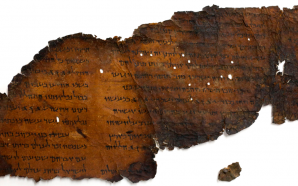 Museum of the Bible Learns All 16 of their Dead…