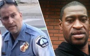 Derek Chauvin, the officer involved in George Floyd's death, is…